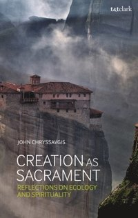 Creation as Sacrament (e-bok)