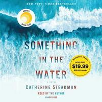 Something in the Water (cd-bok)