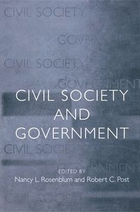 Civil Society and Government (häftad)