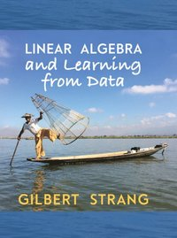 Linear Algebra and Learning from Data (inbunden)