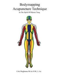 Bodymapping Acupuncture Technique: In the Spirit of Master Tung (häftad)