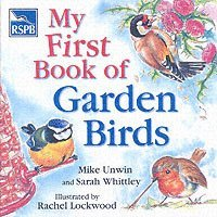 RSPB My First Book of Garden Birds (inbunden)