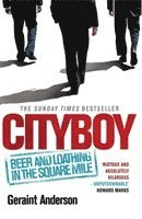 Cityboy: Beer and Loathing in the Square Mile (häftad)