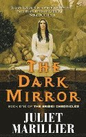 The Dark Mirror (häftad)