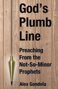 God's Plumb Line av Alex A Gondola Jr (Häftad)