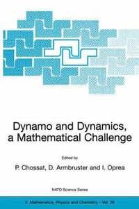 Dynamo and Dynamics, a Mathematical Challenge av Pascal Chossat, Dieter  Armbruster, Iuliana Oprea (Bok)