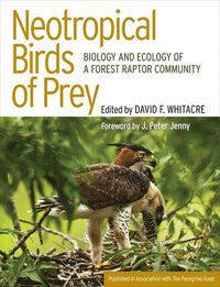 Neotropical Birds of Prey (inbunden)