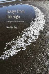 "martin jay essays from the edge An essay on political theory, its inheritance, and the history of ideas, princeton:  princeton university press 1985  295-310 martin jay, ""fieldwork and  theorizing in intellectual history  167-189 roger chartier, on the edge of the  cliff."