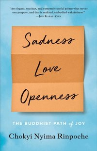 Sadness, Love, Openness (e-bok)