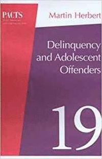 Delinquency and Young Offenders (häftad)