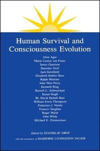 Human Survival and Consciousness Evolution (häftad)