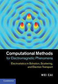 Computational Methods for Electromagnetic Phenomena (inbunden)