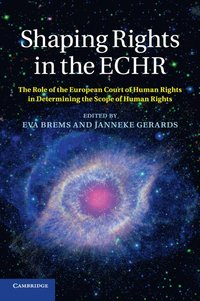 Shaping Rights in the ECHR (häftad)