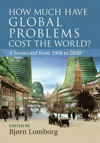 How Much Have Global Problems Cost the World? (häftad)