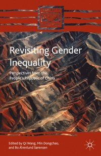 Revisiting Gender Inequality (e-bok)