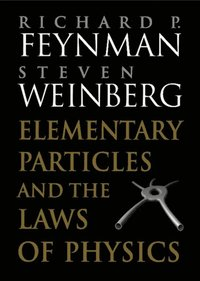 Elementary Particles and the Laws of Physics (e-bok)