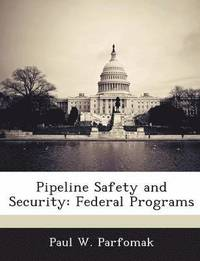 Pipeline Safety and Security (häftad)