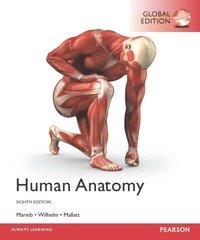 Human Anatomy Global Edition E Bok