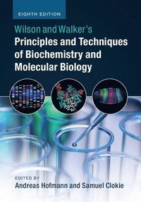 Wilson and Walker's Principles and Techniques of Biochemistry and Molecular Biology (häftad)