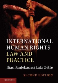 International Human Rights Law and Practice (e-bok)