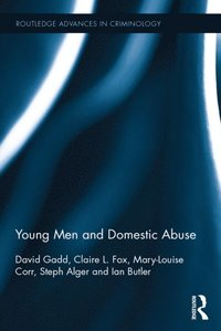 Young Men and Domestic Abuse (e-bok)