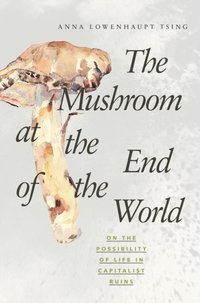 Mushroom at the End of the World (e-bok)