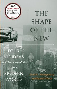 Shape of the New (e-bok)