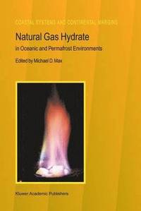 Natural Gas Hydrate (häftad)