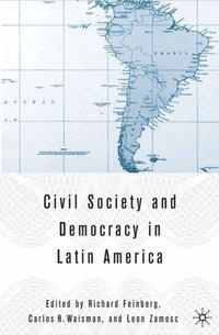 Civil society and democracy in latin america