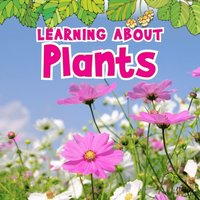 Learning About Plants (e-bok)