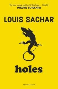 Holes (e-bok)