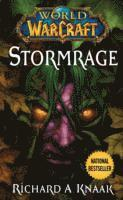World of Warcraft: Stormrage (pocket)