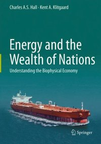 Energy and the Wealth of Nations (e-bok)