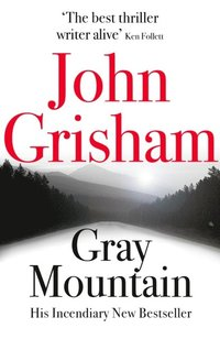 Gray Mountain (e-bok)