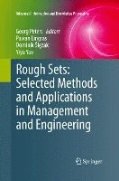 Rough Sets: Selected Methods and Applications in Management and Engineering (häftad)