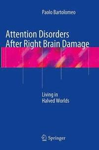 Attention Disorders After Right Brain Damage (häftad)