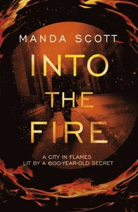 Into The Fire (e-bok)