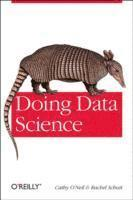 Doing Data Science: Straight Talk from the Frontline (häftad)