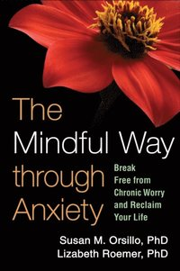 Mindful Way through Anxiety (e-bok)