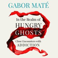 In the Realm of Hungry Ghosts (ljudbok)