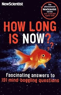 How Long is Now? (häftad)