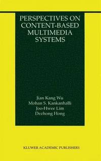 Perspectives on Content-Based Multimedia Systems (häftad)