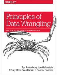 Principles of Data Wrangling (häftad)