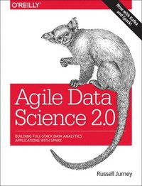 Agile Data Science 2.0 (häftad)