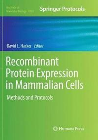 Recombinant Protein Expression in Mammalian Cells (häftad)