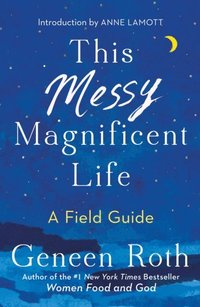 This Messy Magnificent Life (e-bok)