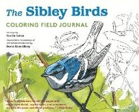 Sibley Birds Coloring Book (inbunden)