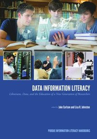 Data Information Literacy (häftad)