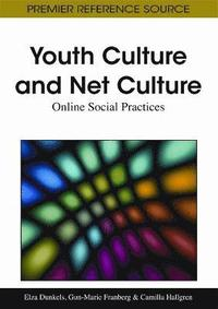 Youth Culture and Net Culture (inbunden)