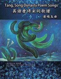 Tang, Song Dynasty Poem Songs (Traditional Chinese Edition) (häftad)